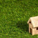 dach zielony cena